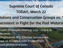 MEDIA ADVISORY: Peel Watershed at Supreme Court photo